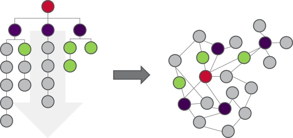 Teamwork: from hierarchy to lattice